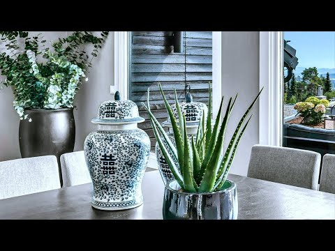 Great Ways To Decorate with Plants,  Home Decorating Ideas